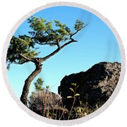Tree And Rock Round Beach Towel