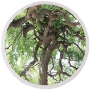 Tree At Ming Tombs Round Beach Towel