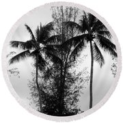 Tree Between The Trees Round Beach Towel