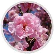 Tree Blossoming Pink Spring Blue Sky Baslee Troutman Round Beach Towel