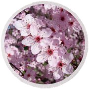 Tree Blossoms Pink Spring Flowering Trees Baslee Troutman Round Beach Towel