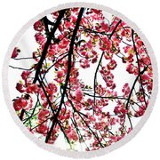 Tree Blossoms Round Beach Towel