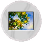 Tree Branch With Leaves In Blue Sky Round Beach Towel