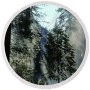 Tree Breath Round Beach Towel