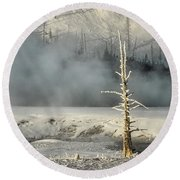 Tree By The Thermal - Yellowstone Round Beach Towel