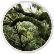 Tree Drama Round Beach Towel