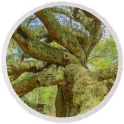 Tree For The Ages Round Beach Towel