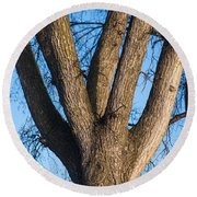 Tree Fork Round Beach Towel