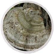 Tree Fungi Round Beach Towel