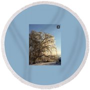 Tree In Ice Round Beach Towel