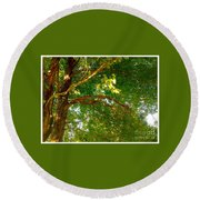Tree In Late Summer Round Beach Towel