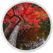 Tree In The Pond Round Beach Towel
