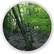 Tree In The Woods Round Beach Towel