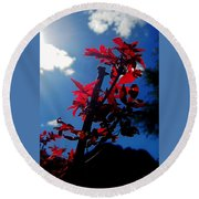 Tree Leaves Red 061814a Round Beach Towel