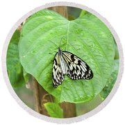 Tree Nymph Butterfly Round Beach Towel