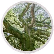 Tree Of History Round Beach Towel