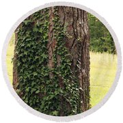 Tree Of Ivy Round Beach Towel