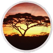 Tree Of Life Africa Round Beach Towel