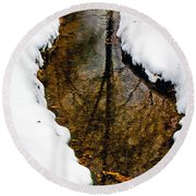 Tree Reflections Round Beach Towel