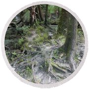 Tree Roots And Lithia Springs Round Beach Towel