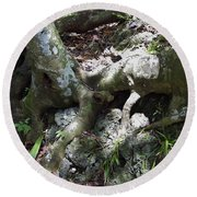Tree Roots On The Bank Round Beach Towel