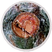 Tree Sap Round Beach Towel