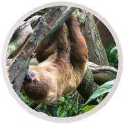 Tree Sloth Round Beach Towel