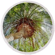 Tree Spray Round Beach Towel