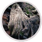 Tree Stump Round Beach Towel