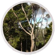 Tree Tops And Beyond Round Beach Towel
