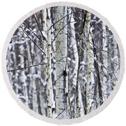 Tree Trunks Covered With Snow In Winter Round Beach Towel