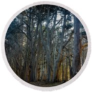 Tree Wall Round Beach Towel