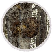 Tree Wart Round Beach Towel