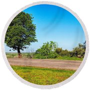 Tree With A View Round Beach Towel