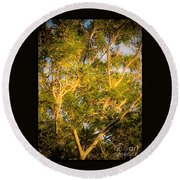 Tree With V Shaped Branches Round Beach Towel