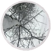 Tree Wrapped In Snow Round Beach Towel