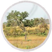 Trees 015 Round Beach Towel