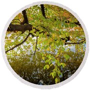 Trees 9684 Round Beach Towel