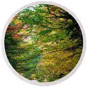 Trees Along The Flumes Trail Round Beach Towel