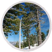 Trees And Snag At Crater Lake Round Beach Towel
