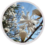 Trees Art Prints White Magnolia Flowers Baslee Troutman Round Beach Towel