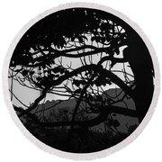 Trees Black And White - San Salvador Round Beach Towel