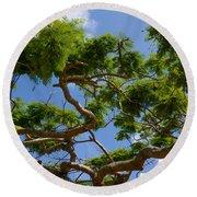 Trees In Bermuda Round Beach Towel