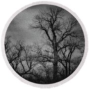 Trees In Storm In Black And White Round Beach Towel