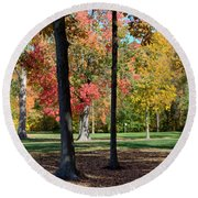 Tree's In The Forest 2 Round Beach Towel