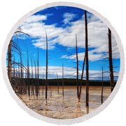 Trees In The Midway Geyser Basin Round Beach Towel