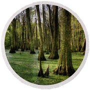 Trees In The Swamp Round Beach Towel