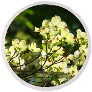 Trees Landscape Art Sunlit White Dogwood Flowers Baslee Troutman Round Beach Towel