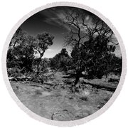 Trees Of Canyon Lands Round Beach Towel