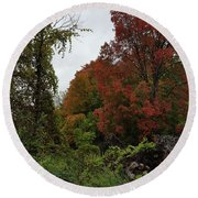 Trees Of Colorful Leaves In Autumn Mi Round Beach Towel